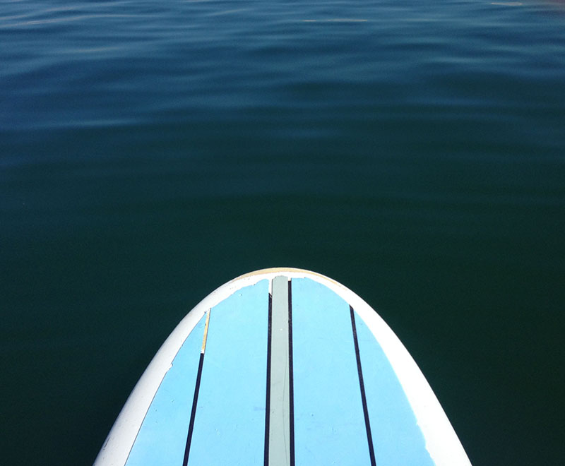A paddleboard in Florida Gulf coast waters.