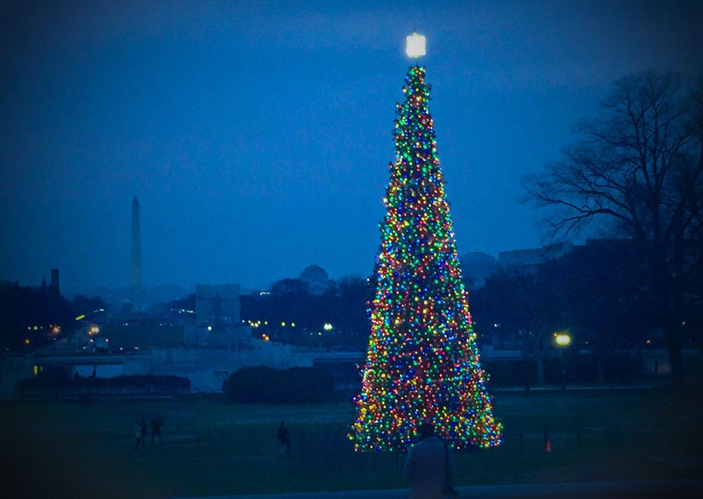 christmas tree 1K IMG_0620